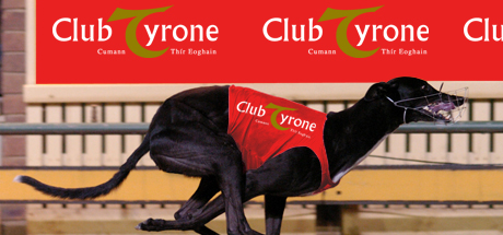 Club Tyrone – Night at the Dogs