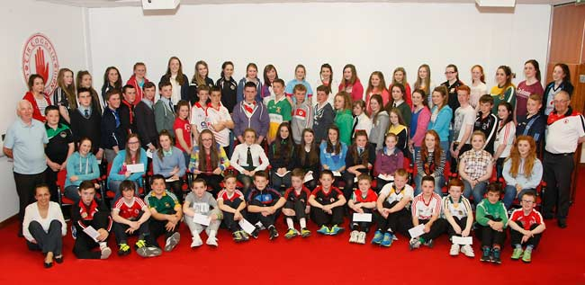 Gaeltacht Grants presentation 2014