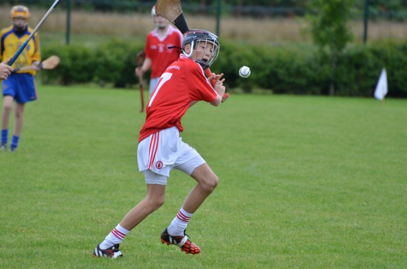 Tyrone U14 2014-08-30 91 all-Ireland