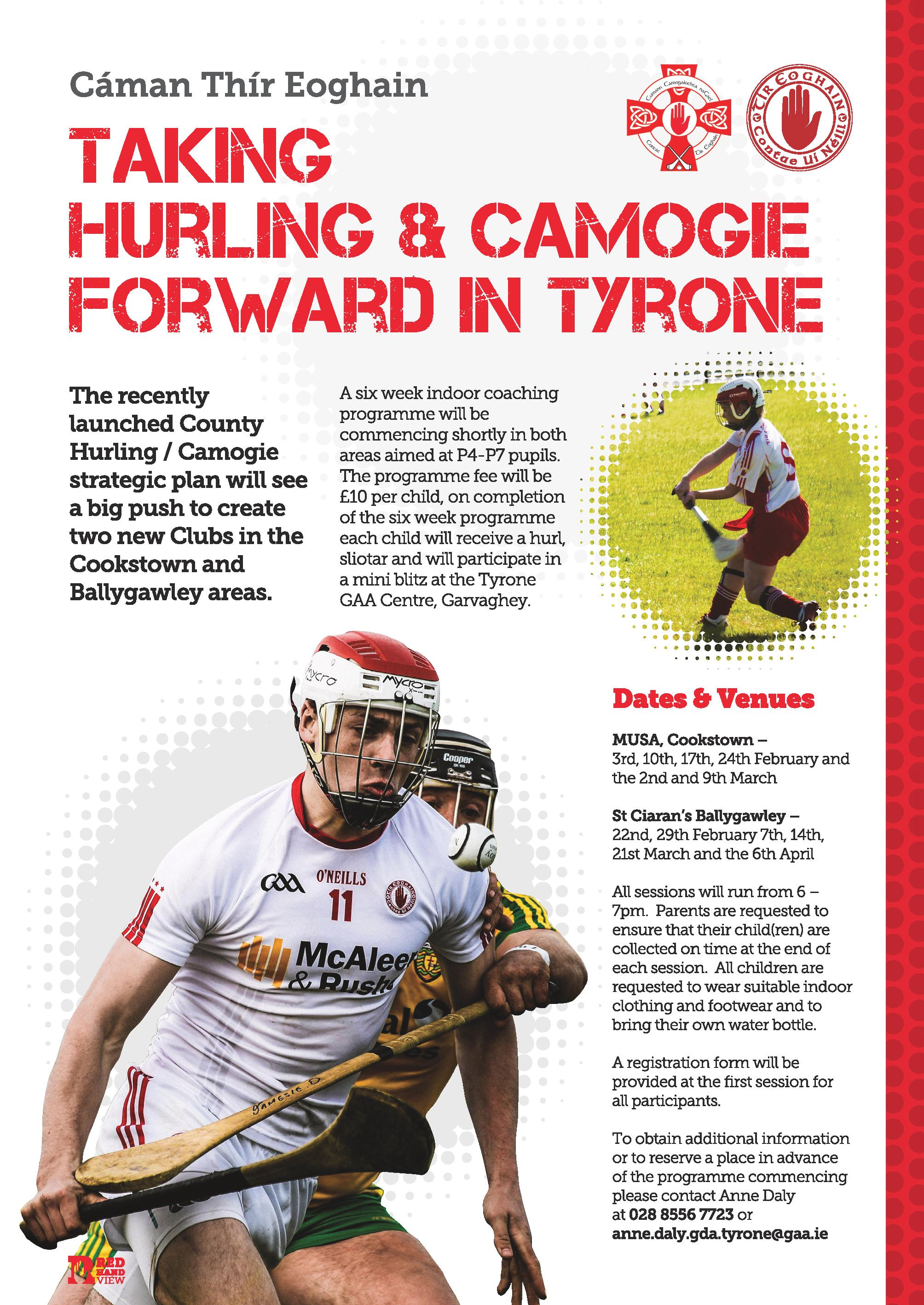 Hurling coaching in MUSA & St Ciaran's in February