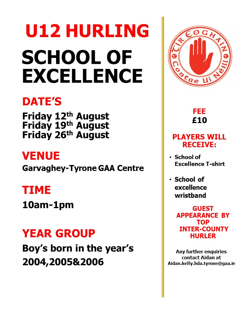 Tyrone  U12 hurling 'School of excellence'