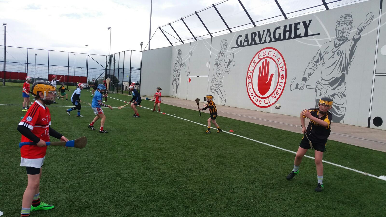 Tyrone Under 12 Hurling School of Excellence