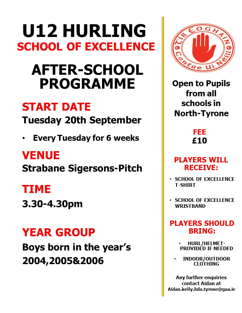 U12 Hurling Afterschool programme