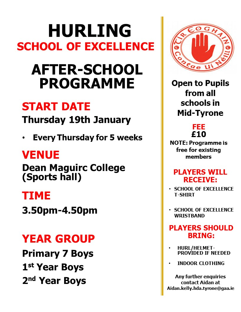 Hurling School of Excellence restarting January 2017