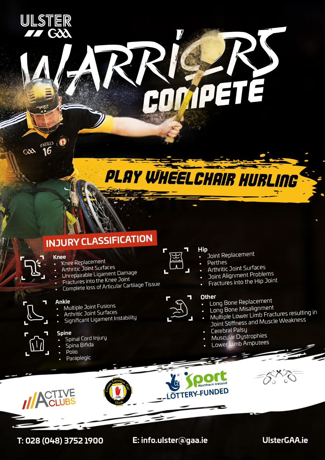 WHEELCHAIR HURLING COMES TO HEALY PARK